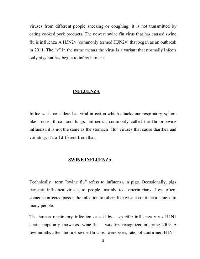 Essays About Business  High School Admissions Essay also English Essay Ideas Swine Flu Essay Essay Style Paper