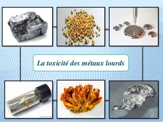 La toxicité des métaux lourds
