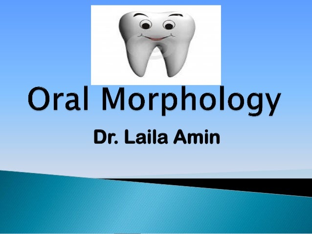 Dr. Laila Amin