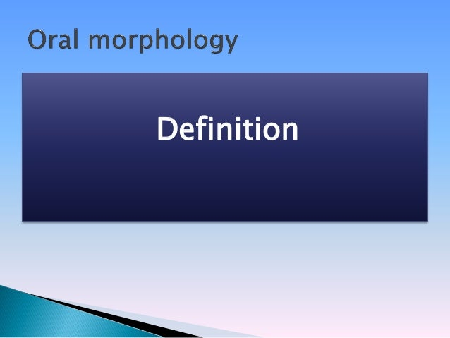 Introduction To Morphology - Definitions Slide 2