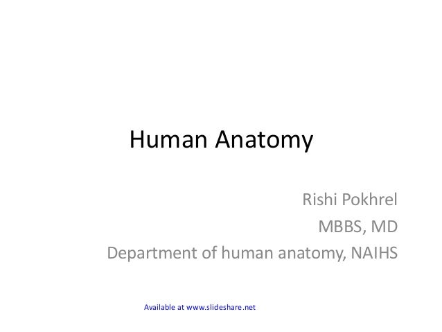 Human Anatomy Rishi Pokhrel MBBS, MD Department of human anatomy, NAIHS Available at www.slideshare.net