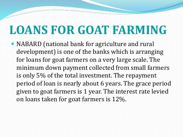 Goat Farming Project Report For Bank Loan Pdf In Marathi