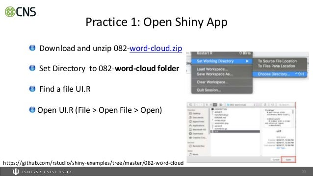 Introduction to Interactive Shiny Web Application