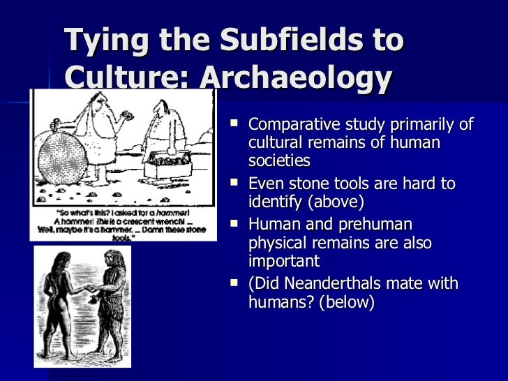 introduction to anthropology Anthropology courses at ramapo are concentrated in cultural anthropology, the  sub-discipline of  anth 102 - introduction to anthropology.