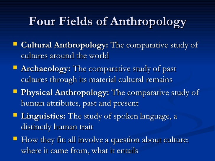 what are the branches of anthropology