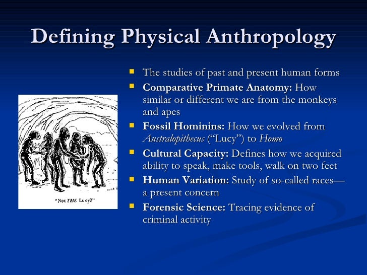 the importance of anthropology in the study of the past Archaeology is the study of the ancient and recent human past through material remains it is a subfield of anthropology, the study of all human culture.