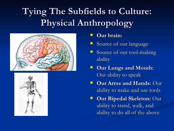 ebook notes on spiritual discourses of shri