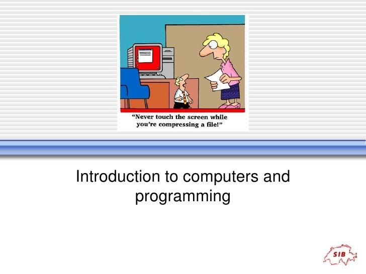 a career as a computer programmer essay