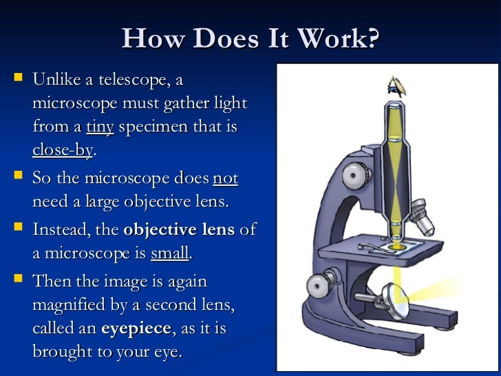 Introduction To Microscopes History Amp Parts