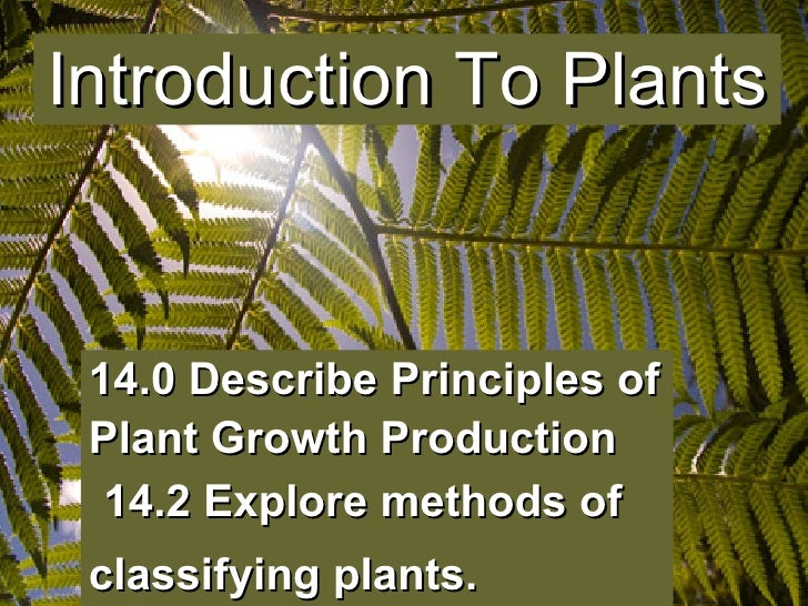 14.0 Describe Principles of Plant Growth Production     14.2 Explore methods of classifying plants.   Introduction To Plants