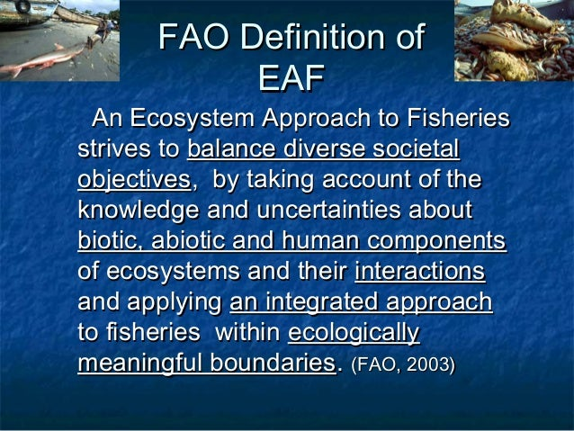 Introduction to the ecosystem approach as a framework for for Sustainable fishing definition