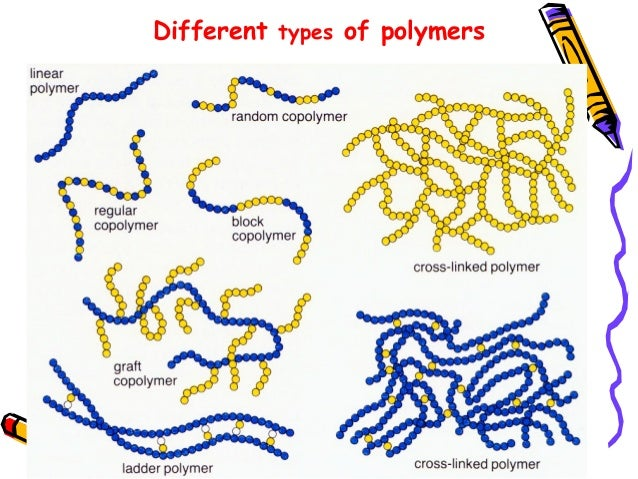 polymer chains 444 rheol acta (2010) 49:443–458 polyethylene (hmp) and also, the understanding by others, resulted in a deeper understanding of the way chain stretching influenced polymer rheology and.