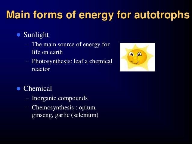define chemosynthesis in biology