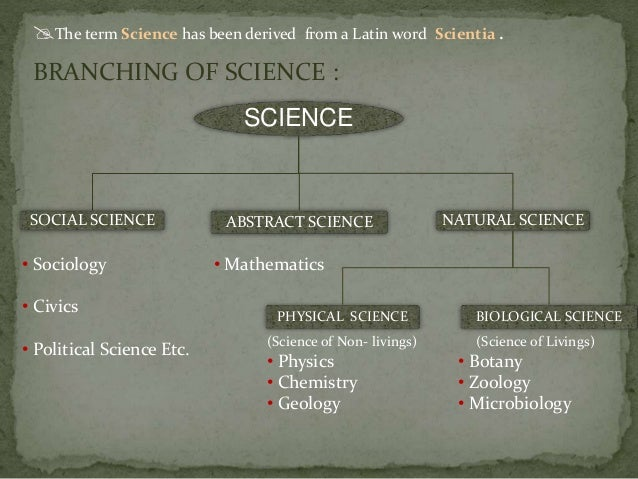 Branches Of Natural Science And Their Meaning