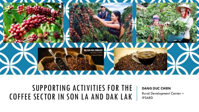 SUPPORTING ACTIVITIES FOR THE COFFEE SECTOR IN SON LA AND DAK LAK DANG DUC CHIEN Rural Development Center – IPSARD