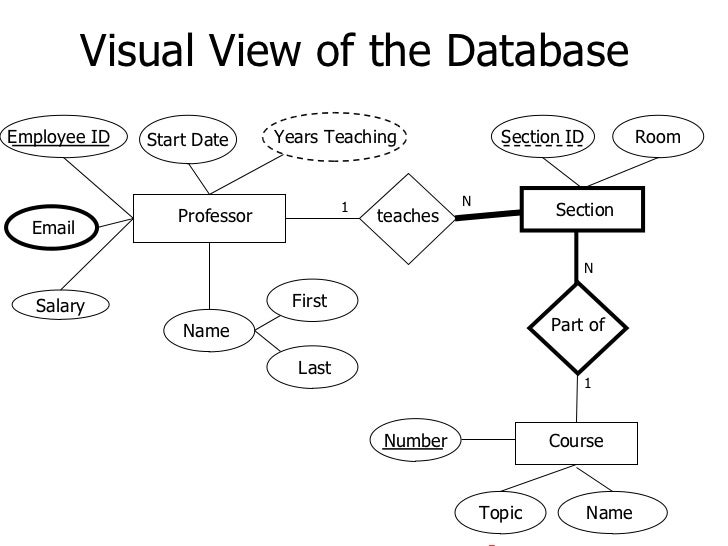 Visual View of the DatabaseEmployee ID   Start Date     Years Teaching                Section ID          Room            ...