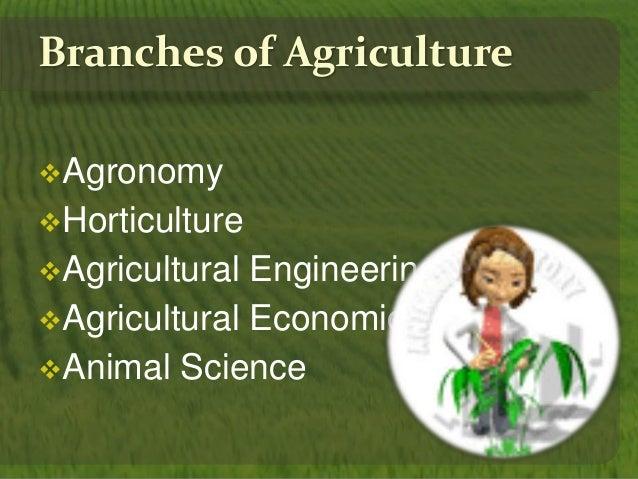 Agronomical vs horticultural crops