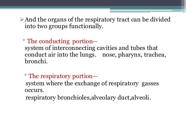 an introduction to the respiratory system Confused about the mcat not sure how to prepare this guide will show you how.