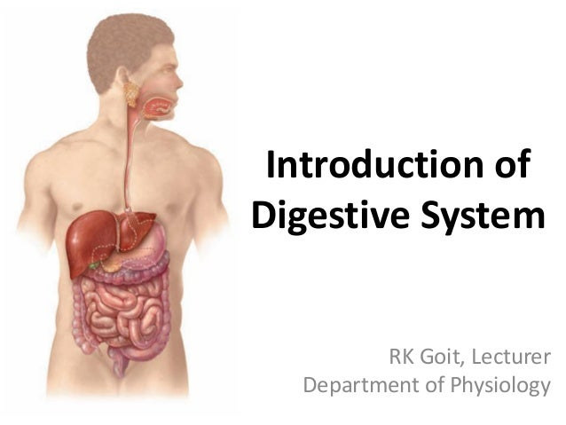 Introduction of Digestive System RK Goit, Lecturer Department of Physiology