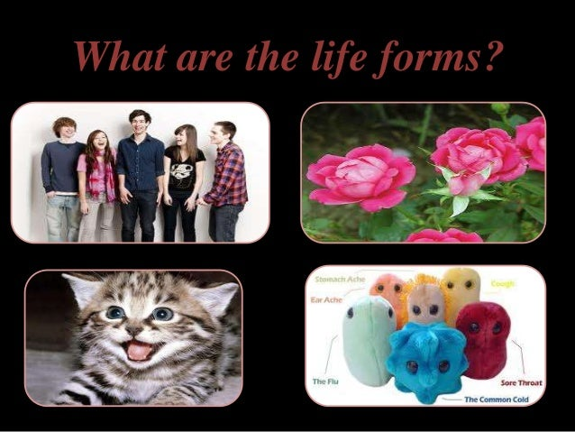 Introduction To Microbiology Slide 3