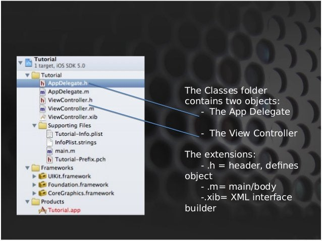 The Classes folder  contains two objects:  - The App Delegate  - The View Controller  The extensions:  - .h = header, defi...