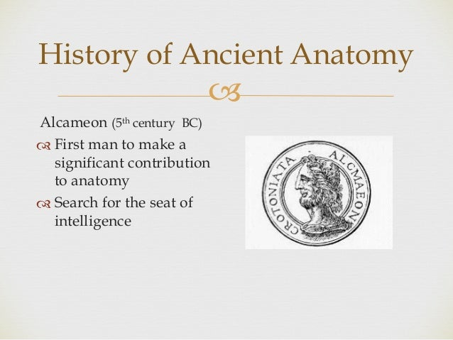 Introduction to anatomy 1