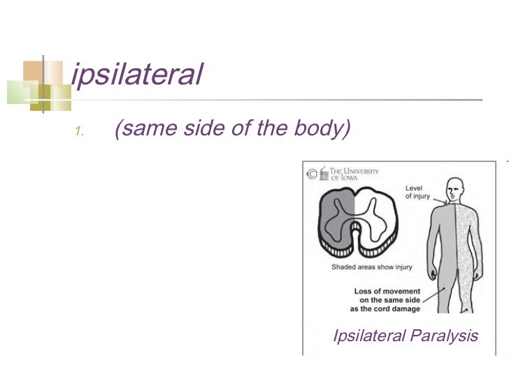 Introduction to anatomy & physiology2