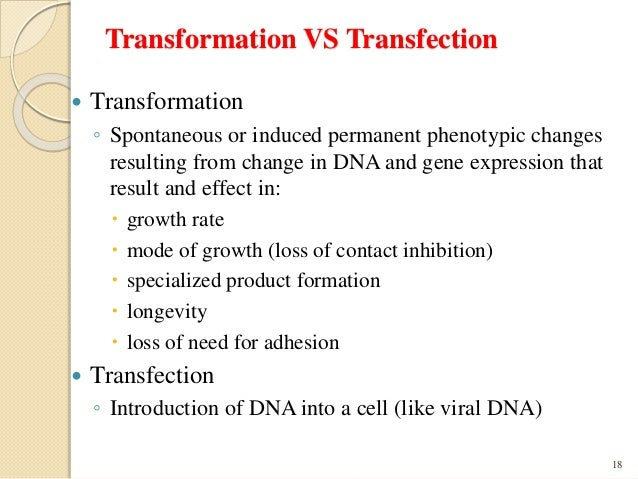 an introduction to the molecule responsible for the transformation of characteristics dna Introduction a plasmid is a small circular piece of dna (about 2,000 to 10,000  base pairs) that contains  it is this characteristic of plasmids that is exploited for  use in transformation  gfp is also used in research as a reporter molecule.