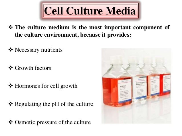 how to change media for cell culture