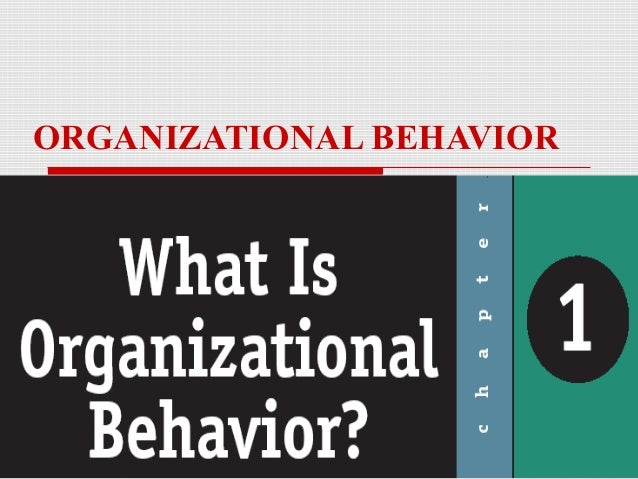introduction to organizational behaviour assessment Organizational behavior is the study of both group and individual performance and activity within an organization internal and external perspectives are two theories of how organizational.