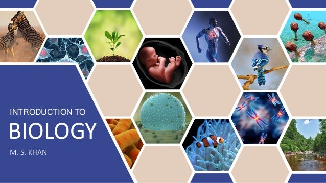 INTRODUCTION TO BIOLOGY M. S. KHAN