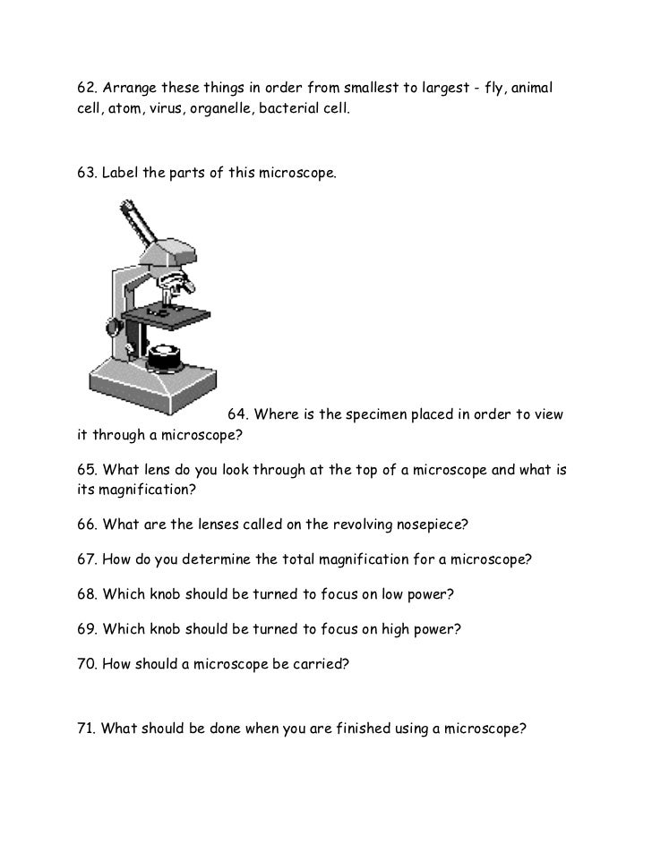 Printables Introduction To Biology Worksheet introduction to biology worksheet from notes 6