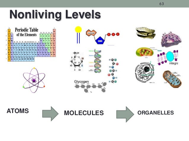 Cells And Cell Transports