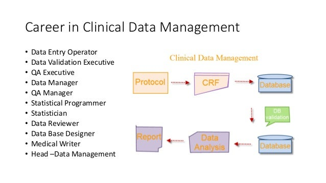data management 6 what is the job of clinical sas programmer - Clinical Database Programmer