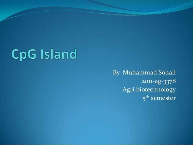 By Muhammad Sohail 2011-ag-3378 Agri.biotechnology 5th semester