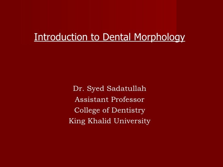 Introduction to Dental Morphology Dr. Syed Sadatullah Assistant Professor College of Dentistry King Khalid University