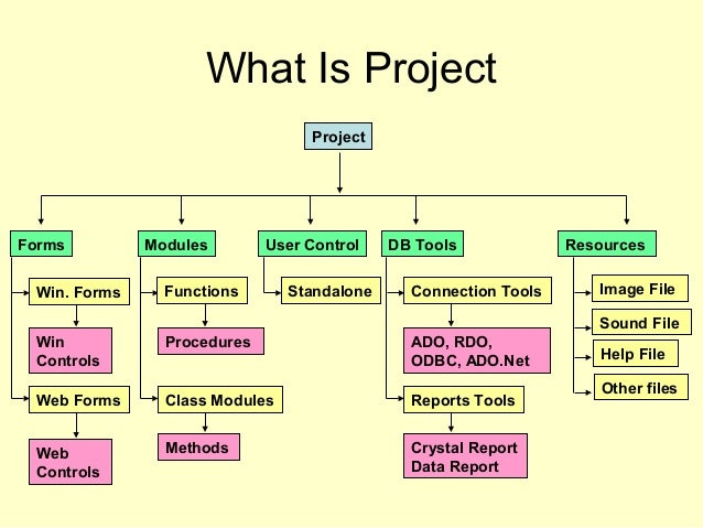 What Is Project Project ResourcesDB ToolsUser ControlModulesForms Standalone Image File Sound File Help File Other files W...