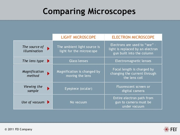 An Introduction To Electron Microscopy By Fei Company