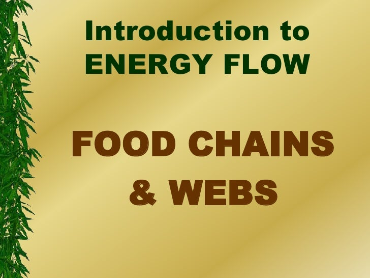 Introduction toENERGY FLOWFOOD CHAINS  & WEBS