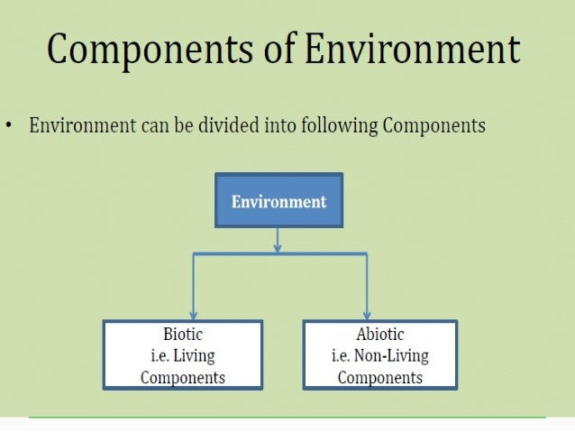 Bronfenbrenner's Ecological Systems Theory of ... - Study.com