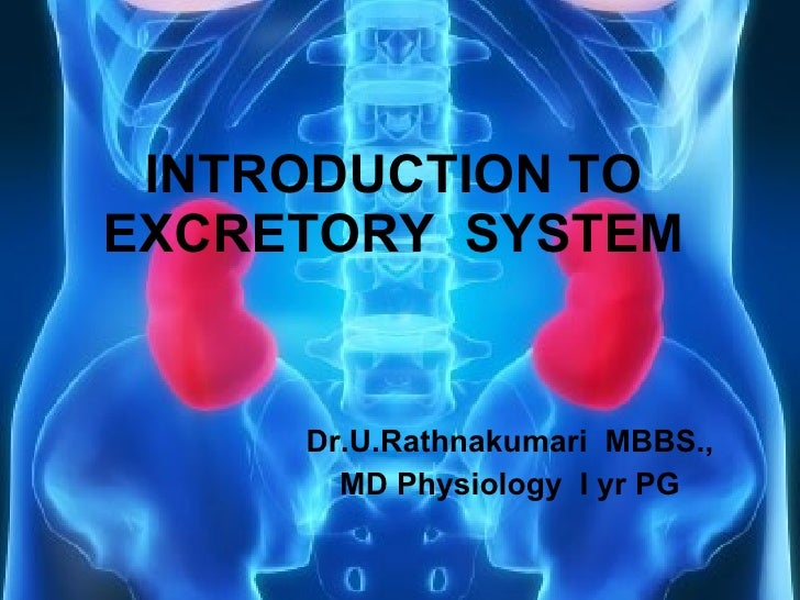 INTRODUCTION TO EXCRETORY  SYSTEM Dr.U.Rathnakumari  MBBS., MD Physiology  I yr PG