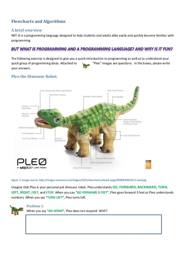 what is algorithm in programming language pdf