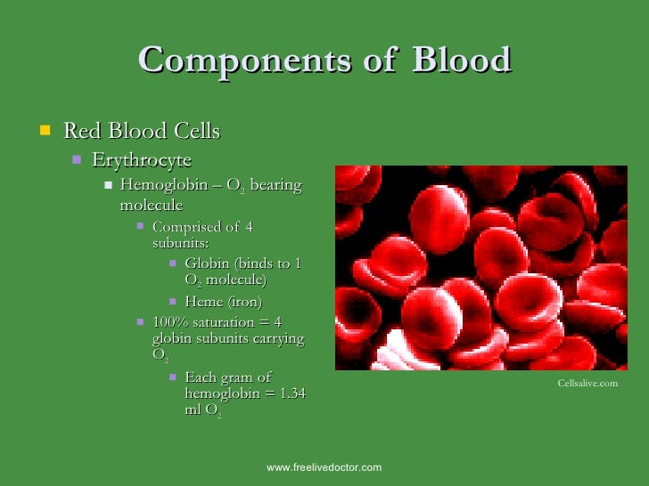 Components of Blood <ul><li>Red Blood Cells </li></ul><ul><ul><li>Erythrocyte </li></ul></ul><ul><ul><ul><li>Hemoglobin – ...