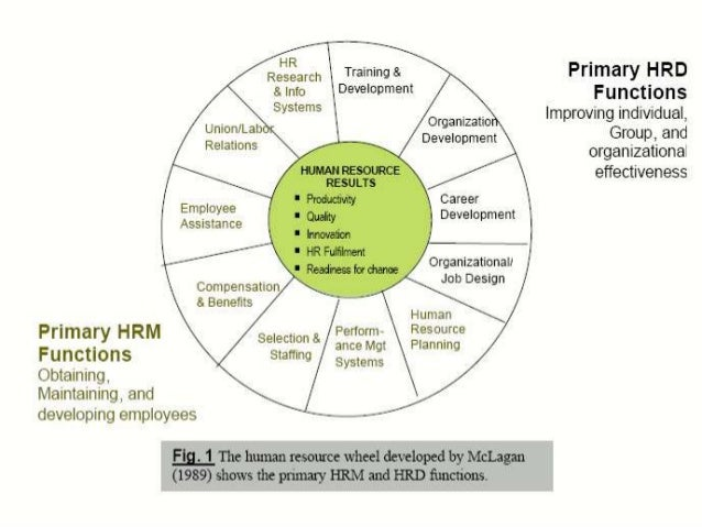 how action oriented hrm departments differ from Having the right people in place means companies can address and solve  hr  departments not only recruit and interview potential candidates, but also pick out  the  this involves grouping activities functions or positions, assigning different   predictive analytics: a data-driven approach to human resources will enable.