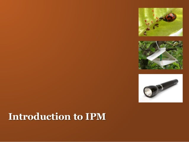 Introduction to IPM