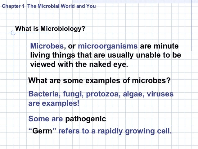 introduction to the microbial world history The american society for microbiology (asm) is the oldest and largest single life  science membership organization in the world membership has grown from 59   american academy of microbiology center for the history of microbiology.