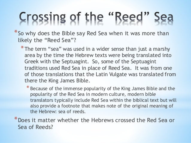 Image result for red sea or reed sea?