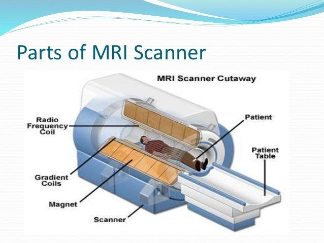 Mri Scan Machine Diagram