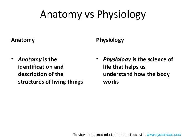 Introduction To Ocular Anatomy And Physiology A