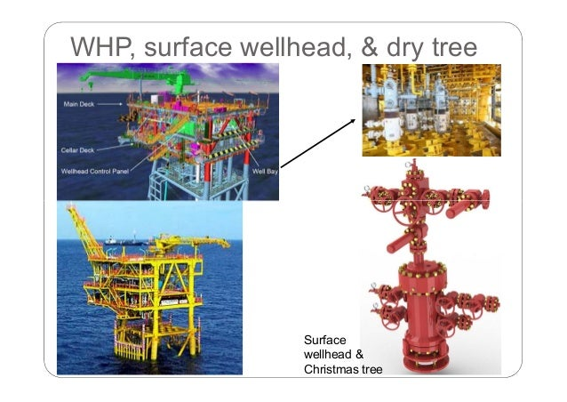 9c407773157 Introduction to Offshore Oil and Gas Surface Facilities